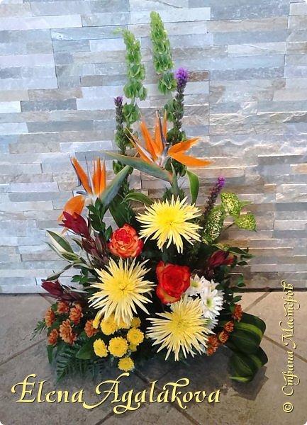 Добрый день! Этим летом я решила осуществить еще одну свою мечту - научится цветочному дизайну. Очень люблю цветы, травки-муравки, деревья и вообще все растения. Уже третий месяц я учусь создавать красоту! Очень увлекательно работать с цветами! Я взяла небольшой курс по цветочному дизайну. Дома делаю оранжировки из того что под рукой, беру цветы из своего садика. Другие композиции делала для цветочного магазина где прохожу практику. Начинаю работать цветочным дизайнером, пожелайте мне успеха. Делюсь красотой! фото 8