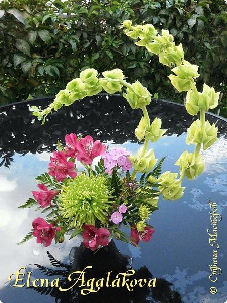 Добрый день! Этим летом я решила осуществить еще одну свою мечту - научится цветочному дизайну. Очень люблю цветы, травки-муравки, деревья и вообще все растения. Уже третий месяц я учусь создавать красоту! Очень увлекательно работать с цветами! Я взяла небольшой курс по цветочному дизайну. Дома делаю оранжировки из того что под рукой, беру цветы из своего садика. Другие композиции делала для цветочного магазина где прохожу практику. Начинаю работать цветочным дизайнером, пожелайте мне успеха. Делюсь красотой! фото 7