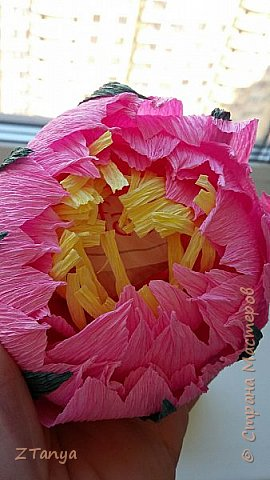 Подсолнух из конфет. фото 12