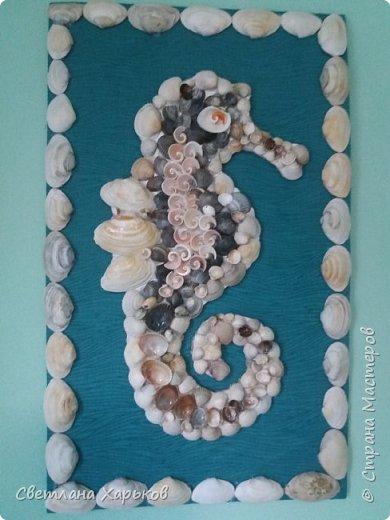Морской конек из ракушек