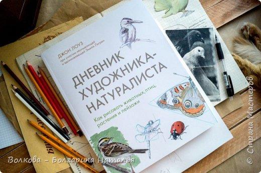 """Книга Джона Лоуза """"Дневник художника-натуралиста. Как рисовать животных, птиц, растения и пейзажи"""" (М.: МИФ, 2018) хороша не только тем, что автор даёт рекомендации по зарисовкам и оформлению (зарисовок) птиц, животных, насекомых, пейзажей. Очень много внимания уделено методам исследования интересующего объекта.  Читая, а скорее листая этот путеводитель по миру натуралистов, возникал вопрос: а зачем так заморачиваться, когда существуют фотоаппараты, диктофоны и энциклопедии? Конечно, с помощью техники наблюдать и фиксировать увиденное проще в разы, но наверняка интереснее делать это дедовским методом. И, опять же, это будут уже твои личные наблюдения и ты точно своими глазами/ушами увидишь/услышишь что-то новое.  Очень мне понравился способ зарисовывать/записывать песни птиц. Оказывается это так забавно и просто. Можно, и даже нужно, накладывать слова на птичью музыку. По этому поводу вспомнился случай из детства, когда прабабушка напевала мелодию, которую тринькали птицы, сидя на проводах. Самое смешное, что я тогда удивлялась, как так птицы могут петь """"сИрИда, пятница, между ними чИЧверИГ"""":)))) Не сразу дошло до меня, что это был экспромт бабушки наложить слова на мелодию:)  Кроме того, в книге очень много советов по материалам и техникам рисования.  Заманчивые пошаговые инструкции по рисованию разной живности не оставят вас равнодушным, руки так и будут тянуться попробовать что-нибудь зарисовать. Я попробовала изобразить божью коровку цветными карандашами, хотя в книге приведён пример на красках. Хотя тут кому что нравится. Мне больше нравится карандаши. фото 1"""