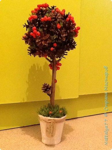 Поделка в садик из природного материала  фото 2