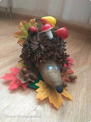 Всем привет! Что-то нахлынуло Осеннее настроение! Решили с сыночком сделать поделку в детский сад! Вот что из этого получилось... Миленький ежик, но немного длинноват носик))) Смахивает на крыску))) фото 6