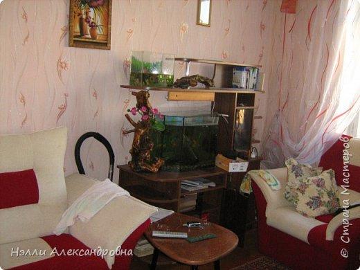 Одно время увлекалась корягами в интерьере квартиры. фото 1