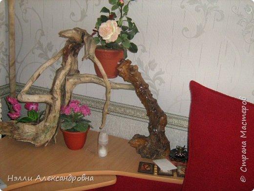 Одно время увлекалась корягами в интерьере квартиры. фото 5