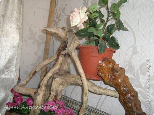 Одно время увлекалась корягами в интерьере квартиры. фото 6