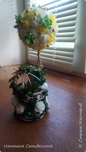 Оба Топиария в подарок были сделаны. фото 7