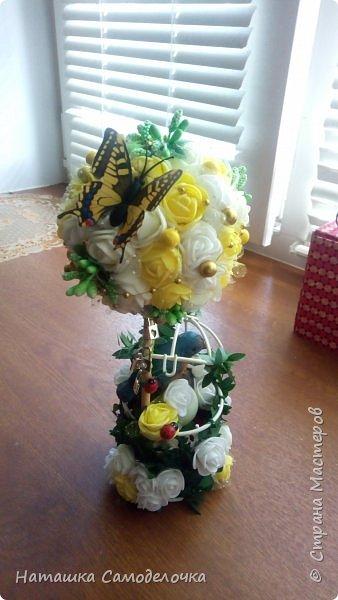 Оба Топиария в подарок были сделаны. фото 6