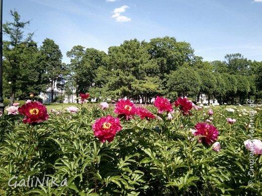 Добрый день, друзья!  Вспоминаю чудесное лето этого года...  Много солнечных дней! Отличная погода! Красивая природа!  Начну с моих впечатлений от поездки в город Тверь. фото 16
