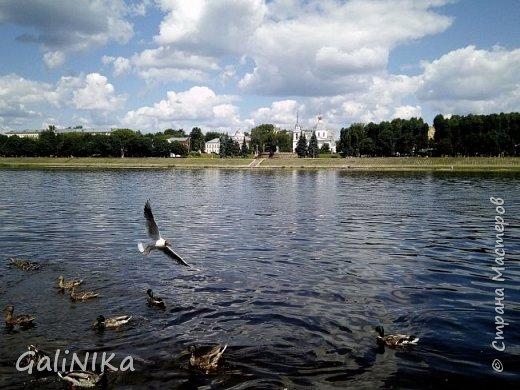 Добрый день, друзья!  Вспоминаю чудесное лето этого года...  Много солнечных дней! Отличная погода! Красивая природа!  Начну с моих впечатлений от поездки в город Тверь. фото 5
