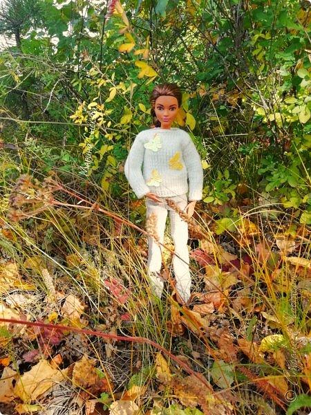 Накопились у меня тут фото ))) Это Миранда в новом платье свитере . Гуляли на озере . фото 27