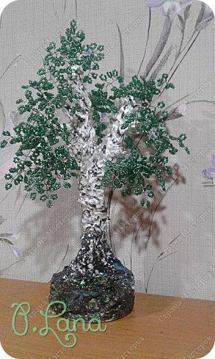 Добрый день ,друзья! Сегодня хочу показать вам берёзку,которую мы сделали вместе с дочкой.Основную работу делала она я только помогла собрать дерево. фото 3