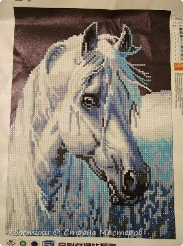 Одно из последних моих увлечений - алмазная мозаика. Вот несколько моих работ :) фото 10