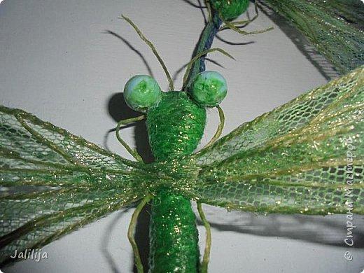 Приветствую всех заглянувших ко мне на страницу, посмотреть на моих стрекоз. Не ищите к какому виду стрекоз они относятся. Эти зелёно-голубые красавицы родились исключительно в моём воображении. фото 7