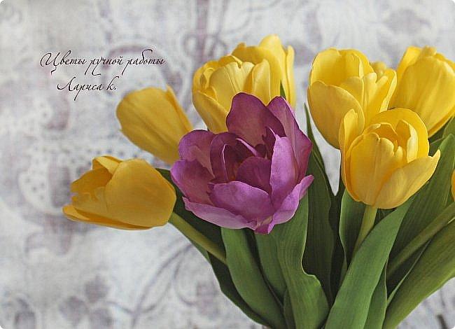 Когда солнышко радует все реже, тучки все чаще, а на душе весна !Просто необходимы тюльпаны!!!! Много тюльпанов!!! Для самого чудесного настроения на всю зиму! Да что там на зиму-на года!!!  фото 6