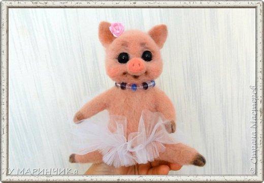 Свинка- балеринка.  фото 1