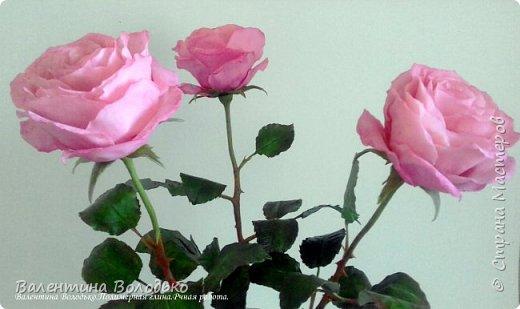 Добрый день мастера и мастерицы!!!!Последнее время в моих работах преобладает розовый цвет.Вот такая бледно - розовая орхидея. фото 10