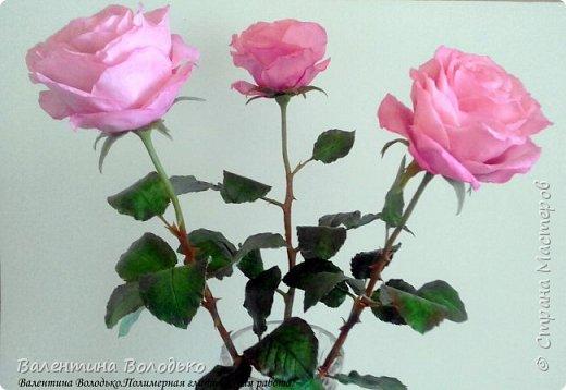 Добрый день мастера и мастерицы!!!!Последнее время в моих работах преобладает розовый цвет.Вот такая бледно - розовая орхидея. фото 11