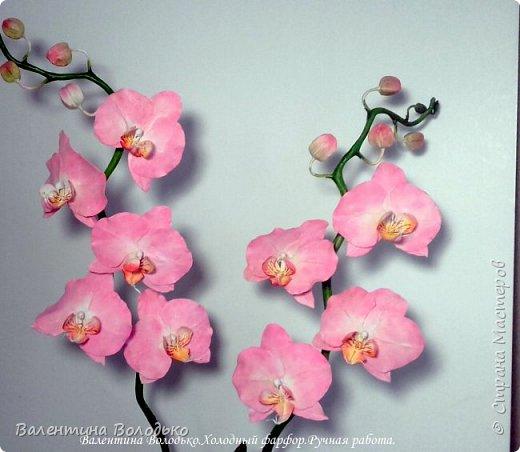 Добрый день мастера и мастерицы!!!!Последнее время в моих работах преобладает розовый цвет.Вот такая бледно - розовая орхидея. фото 9
