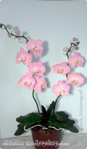 Добрый день мастера и мастерицы!!!!Последнее время в моих работах преобладает розовый цвет.Вот такая бледно - розовая орхидея. фото 7