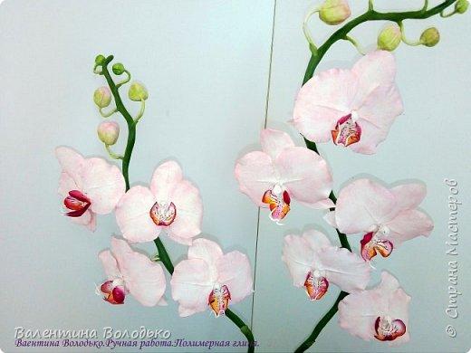 Добрый день мастера и мастерицы!!!!Последнее время в моих работах преобладает розовый цвет.Вот такая бледно - розовая орхидея. фото 2