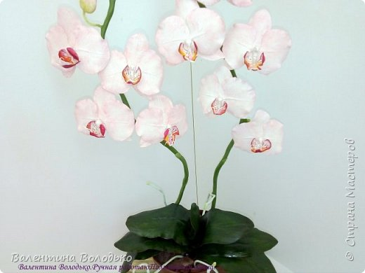 Добрый день мастера и мастерицы!!!!Последнее время в моих работах преобладает розовый цвет.Вот такая бледно - розовая орхидея. фото 5
