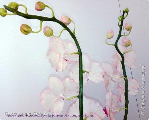 Добрый день мастера и мастерицы!!!!Последнее время в моих работах преобладает розовый цвет.Вот такая бледно - розовая орхидея. фото 6
