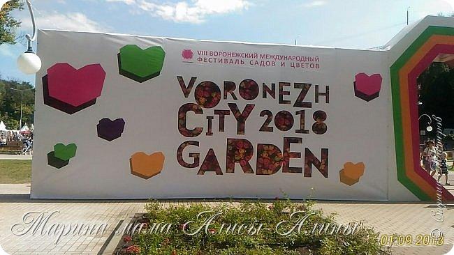 Восьмой международный фестиваль садов и цветов «Город-Сад» прошел в Воронеже с 30 августа по 2 сентября.Мы приехали в парк после первосентябрёвских линеек.  фото 1