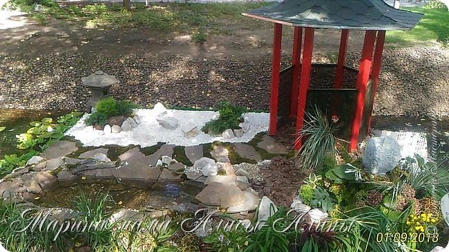 Восьмой международный фестиваль садов и цветов «Город-Сад» прошел в Воронеже с 30 августа по 2 сентября.Мы приехали в парк после первосентябрёвских линеек.  фото 8