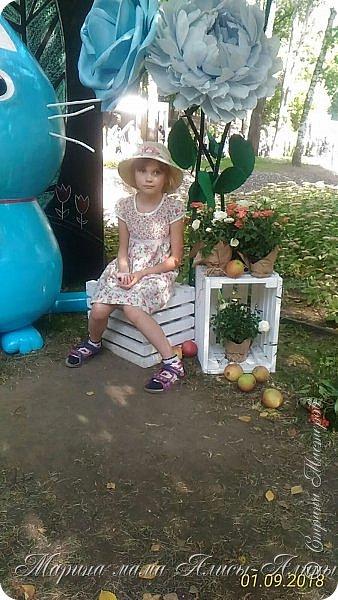 Восьмой международный фестиваль садов и цветов «Город-Сад» прошел в Воронеже с 30 августа по 2 сентября.Мы приехали в парк после первосентябрёвских линеек.  фото 10