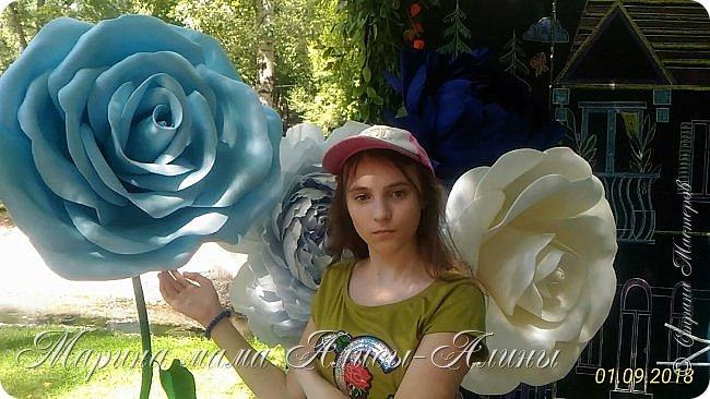 Восьмой международный фестиваль садов и цветов «Город-Сад» прошел в Воронеже с 30 августа по 2 сентября.Мы приехали в парк после первосентябрёвских линеек.  фото 11