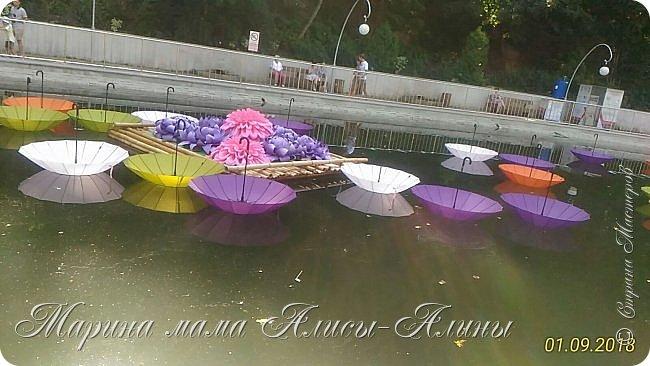 Восьмой международный фестиваль садов и цветов «Город-Сад» прошел в Воронеже с 30 августа по 2 сентября.Мы приехали в парк после первосентябрёвских линеек.  фото 13