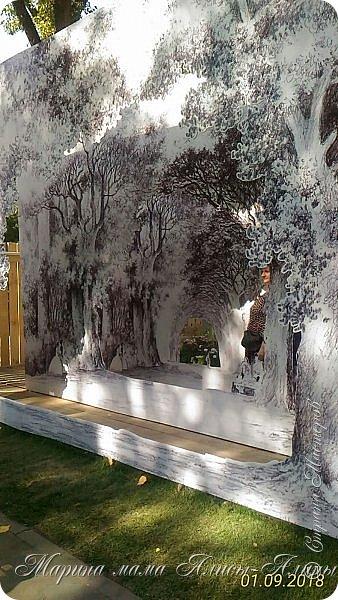 Восьмой международный фестиваль садов и цветов «Город-Сад» прошел в Воронеже с 30 августа по 2 сентября.Мы приехали в парк после первосентябрёвских линеек.  фото 24