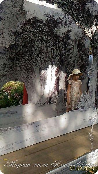 Восьмой международный фестиваль садов и цветов «Город-Сад» прошел в Воронеже с 30 августа по 2 сентября.Мы приехали в парк после первосентябрёвских линеек.  фото 25