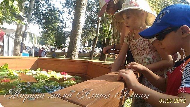 Восьмой международный фестиваль садов и цветов «Город-Сад» прошел в Воронеже с 30 августа по 2 сентября.Мы приехали в парк после первосентябрёвских линеек.  фото 41