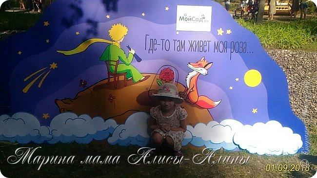 Восьмой международный фестиваль садов и цветов «Город-Сад» прошел в Воронеже с 30 августа по 2 сентября.Мы приехали в парк после первосентябрёвских линеек.  фото 44
