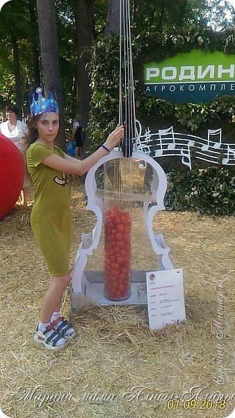 Восьмой международный фестиваль садов и цветов «Город-Сад» прошел в Воронеже с 30 августа по 2 сентября.Мы приехали в парк после первосентябрёвских линеек.  фото 47