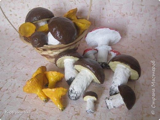 Приветствую!Показываю свои грибочки,которые делала для осенних композиций,украшения группы в детском саду.Изготовлены преимущественно из массы папье-маше,в основе заготовка из мятой бумаги,обтянутой фольгой.На ножках нанесена шпатлевка местами для текстуры,покрашены краской с колерами,покрыты акриловым лаком.Конечно,для естественности глянцевым лаком нужно покрыть только шляпки белых грибов и мухоморов,а ножки и лисички матовым,но так как матового не оказалось под рукой-покрыла целиком глянцевым. фото 3