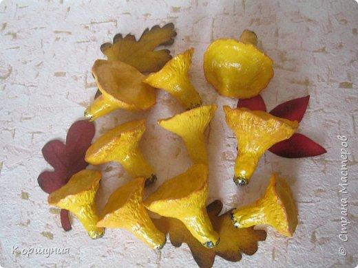 Приветствую!Показываю свои грибочки,которые делала для осенних композиций,украшения группы в детском саду.Изготовлены преимущественно из массы папье-маше,в основе заготовка из мятой бумаги,обтянутой фольгой.На ножках нанесена шпатлевка местами для текстуры,покрашены краской с колерами,покрыты акриловым лаком.Конечно,для естественности глянцевым лаком нужно покрыть только шляпки белых грибов и мухоморов,а ножки и лисички матовым,но так как матового не оказалось под рукой-покрыла целиком глянцевым. фото 26