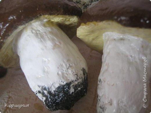 Приветствую!Показываю свои грибочки,которые делала для осенних композиций,украшения группы в детском саду.Изготовлены преимущественно из массы папье-маше,в основе заготовка из мятой бумаги,обтянутой фольгой.На ножках нанесена шпатлевка местами для текстуры,покрашены краской с колерами,покрыты акриловым лаком.Конечно,для естественности глянцевым лаком нужно покрыть только шляпки белых грибов и мухоморов,а ножки и лисички матовым,но так как матового не оказалось под рукой-покрыла целиком глянцевым. фото 16