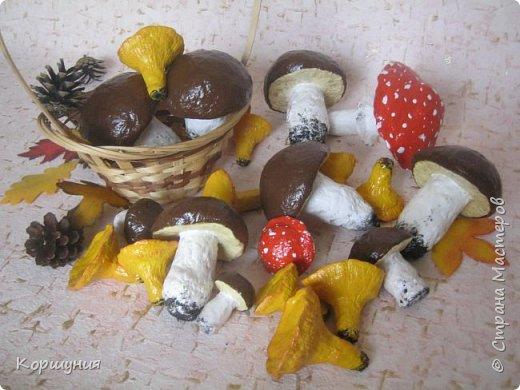 Приветствую!Показываю свои грибочки,которые делала для осенних композиций,украшения группы в детском саду.Изготовлены преимущественно из массы папье-маше,в основе заготовка из мятой бумаги,обтянутой фольгой.На ножках нанесена шпатлевка местами для текстуры,покрашены краской с колерами,покрыты акриловым лаком.Конечно,для естественности глянцевым лаком нужно покрыть только шляпки белых грибов и мухоморов,а ножки и лисички матовым,но так как матового не оказалось под рукой-покрыла целиком глянцевым. фото 1