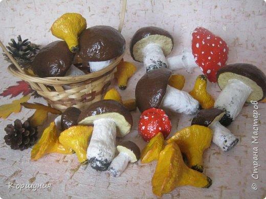 Приветствую!Показываю свои грибочки,которые делала для осенних композиций,украшения группы в детском саду.Изготовлены преимущественно из массы папье-маше,в основе заготовка из мятой бумаги,обтянутой фольгой.На ножках нанесена шпатлевка местами для текстуры,покрашены краской с колерами,покрыты акриловым лаком.Конечно,для естественности глянцевым лаком нужно покрыть только шляпки белых грибов и мухоморов,а ножки и лисички матовым,но так как матового не оказалось под рукой-покрыла целиком глянцевым. фото 33