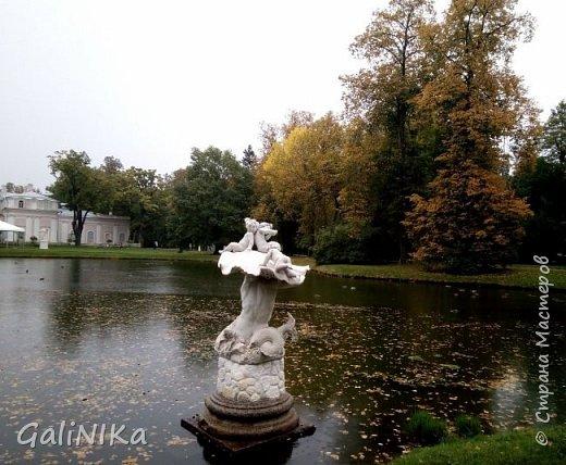 Доброго времени суток, друзья!   Сентябрь в этом году такой по-летнему тёплый, что я бываю на природе больше, чем дома.     В субботу решила съездить в город Ломоносов, расположенный на южном берегу Финского залива в 40 километрах от Санкт-Петербурга (до 1948 года название города Ораниенбаум).  Целью моей поездки была прогулка по дорожкам знаменитого дворцово-паркового ансамбля Ораниенбаум.  А, что ещё в хорошую сентябрьскую погоду делать, если не смотреть на начало золотой осени! Но погода ….   фото 30