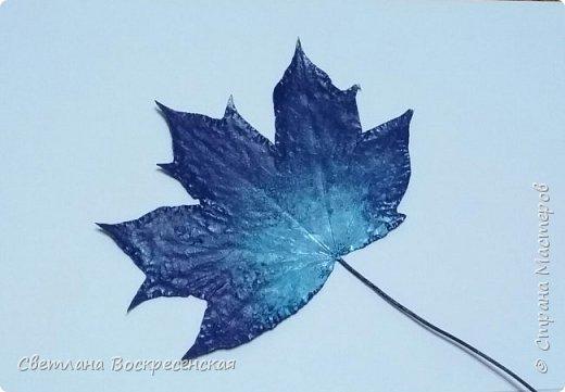 Начинается осень. Родители школьников ищут в интернете идеи для поделок... Ёжиков из шишек делали, рыбок из листьев видели... А! Листья ещё не раскрашивали! Идея не новая, но очень увлекательная. А листья высушенные у нас хранились еще с прошлого года. фото 3