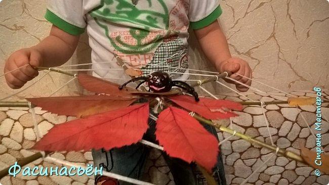 В детском саду просили поделку из природных материалов. я считаю,что ребенок обязательно должен принимать участие в таких мероприятиях. Это не конкурс поделок родителей))). И вместе время провести с пользой. Это наша вторая паутина,Андрей просил для дома тоже паутину сделать. Для дома паутинка более большая получилась.  фото 10