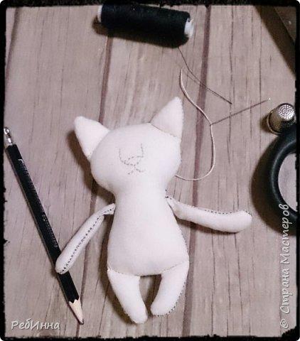 Котик в технике грунтованный текстиль. Усы и брови - обычные катушечные нитки, такими же нитками трёх цветов мелкие стежки на пузике и мордочке. фото 3