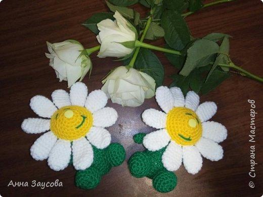 Ромашки для внучки фото 3