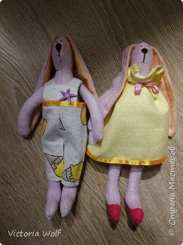 Вот такая прелестная пара зайчишек у меня появилась на свет  фото 4