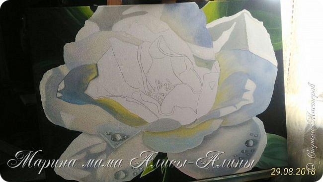 Написала такую большую розу.Интересный опыт в стиле гиперреализм. холст на подрамнике,50*70, масло фото 3