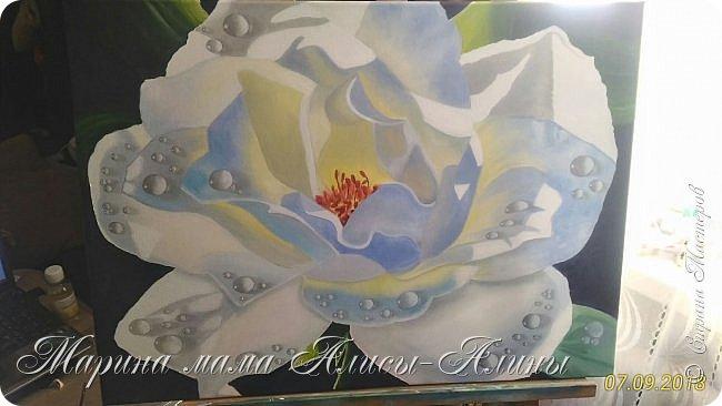 Написала такую большую розу.Интересный опыт в стиле гиперреализм. холст на подрамнике,50*70, масло фото 1